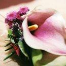 130x130 sq 1236638386235 dawn chris flowers4[1]